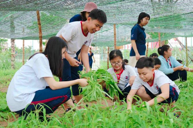 """72 39 vuon rau pic 3 11zon Mô hình """"Vườn rau xanh"""" nhiều ý nghĩa của IEC Quảng Ngãi"""