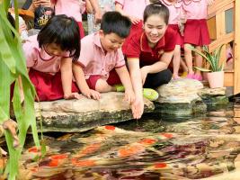 Học sinh Saigon Acaemy Cá Koi